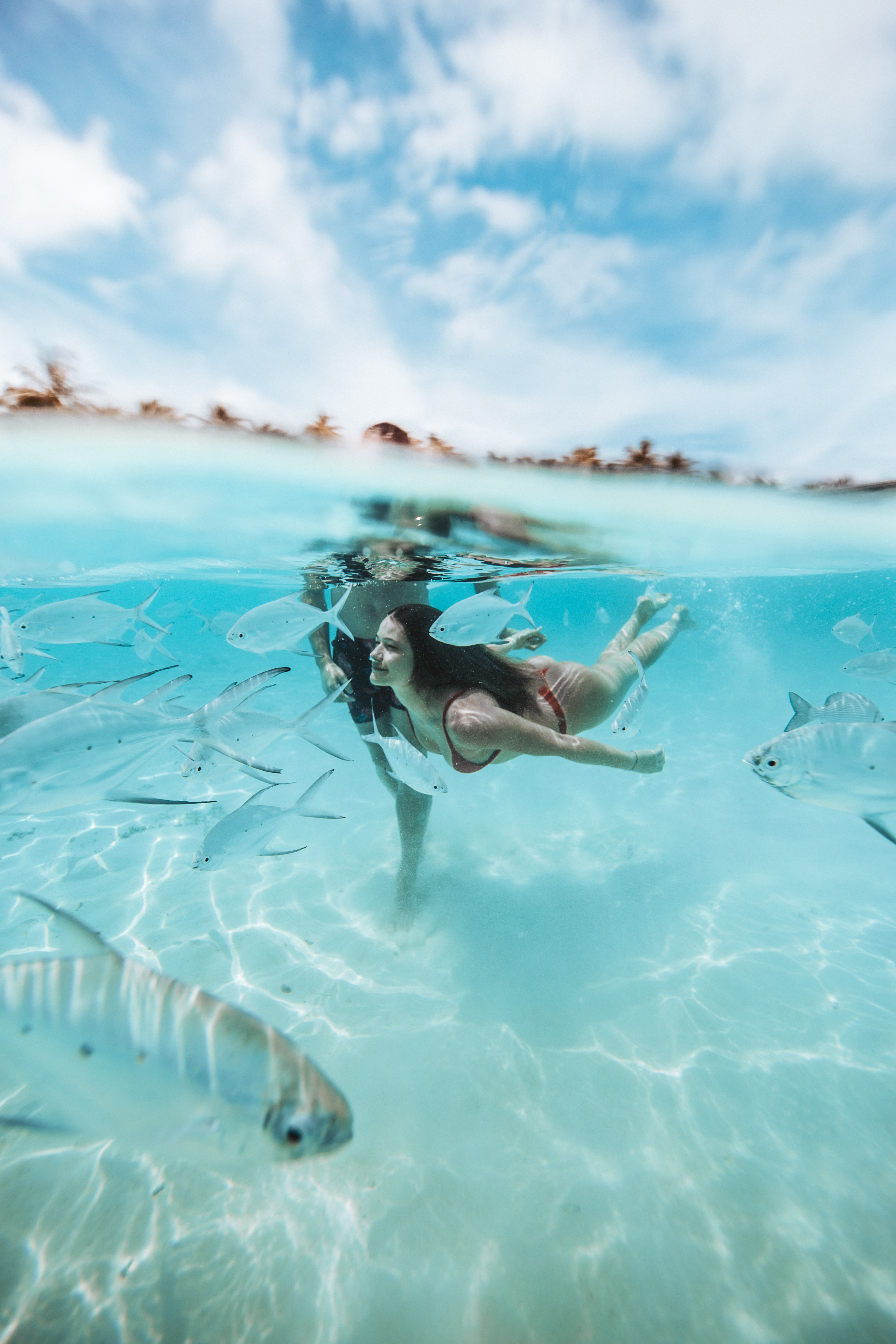 A woman dives beneath the waves amongst fish in the Maldivian shallows