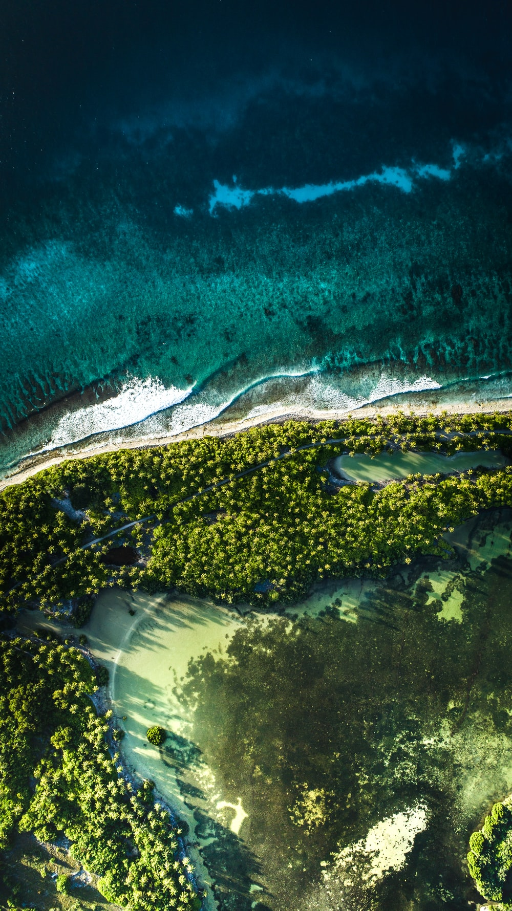 Coastline Of An Island In The Maldives