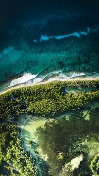 Coastline of an island in the Maldives