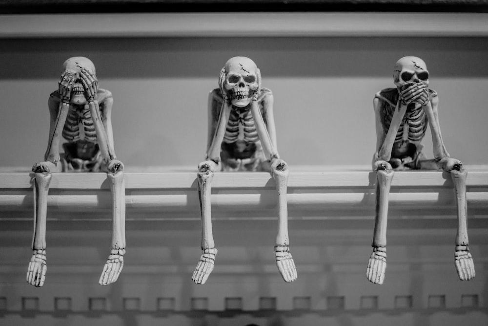three wise sitting human skeleton figurines on white shelf