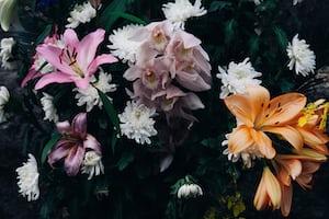 3914. Virágok