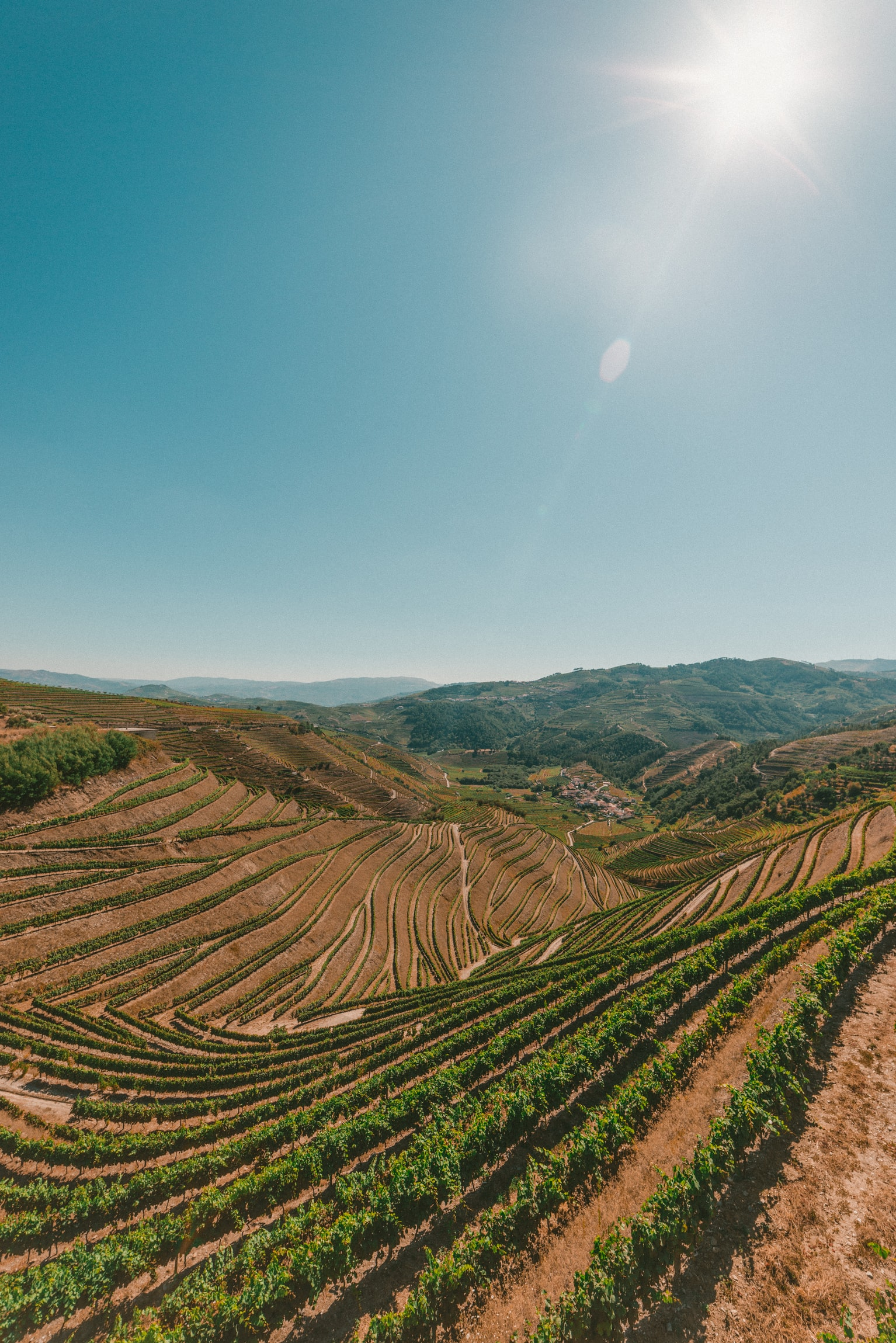 5 Top Places For Foodies To Visit In Portugal