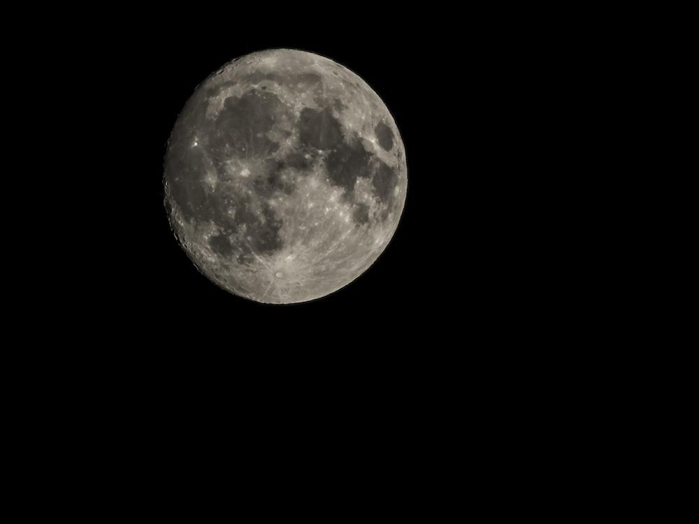 gray moon photo