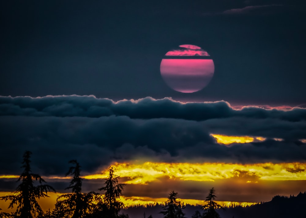 tall trees under pink and black moon