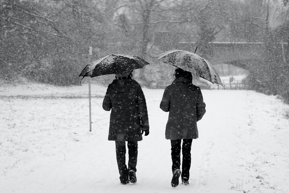 two persons holding umbrella while walking