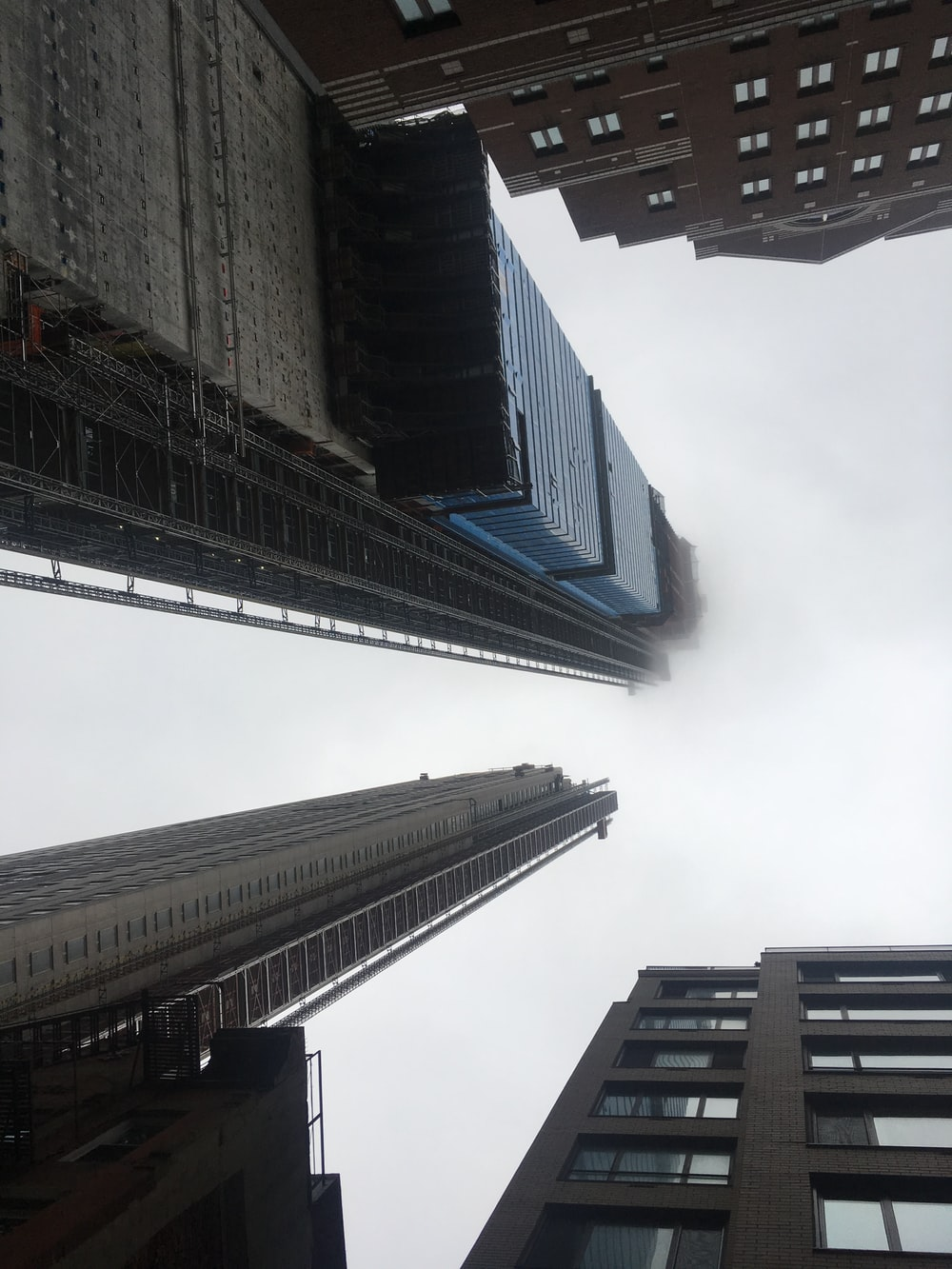 ant's view buildings