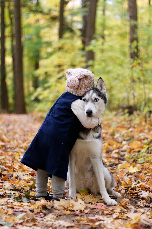 toddler hugging siberian husky