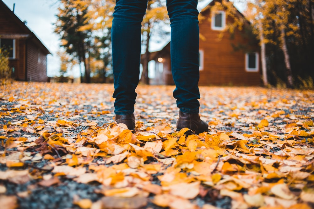 person standing on gray road with leaves