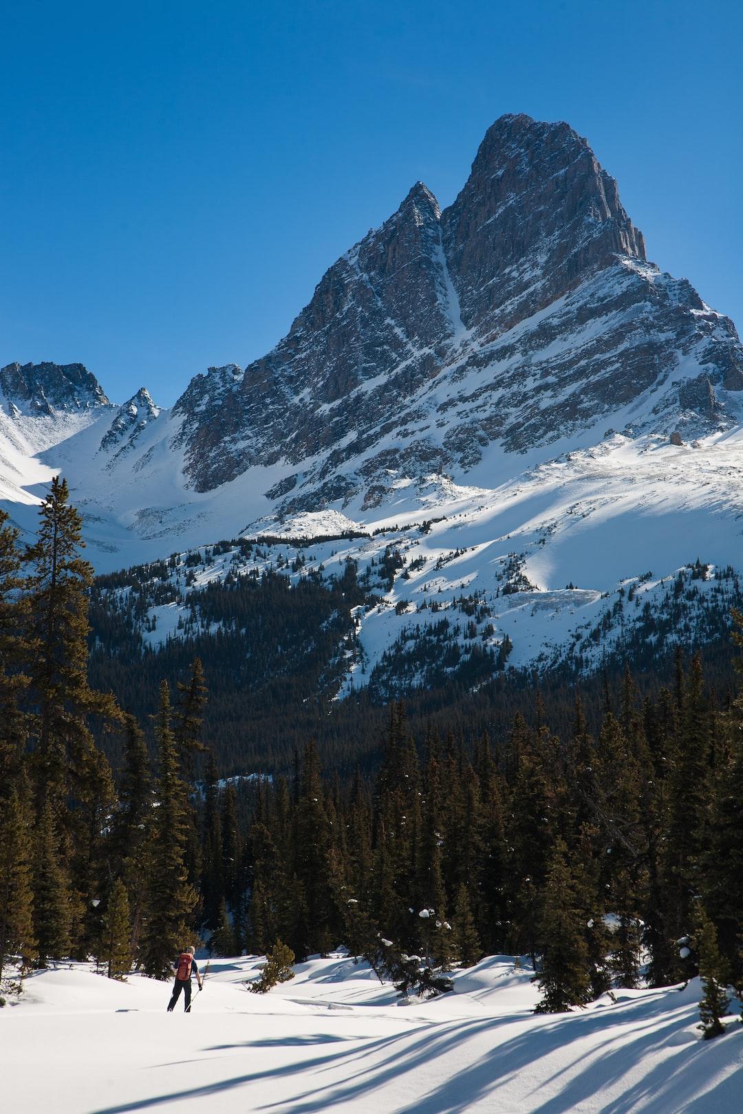 A 35km ski tour in the backcountry of Jasper National Park. Tonquin Valley, Jasper Alberta.