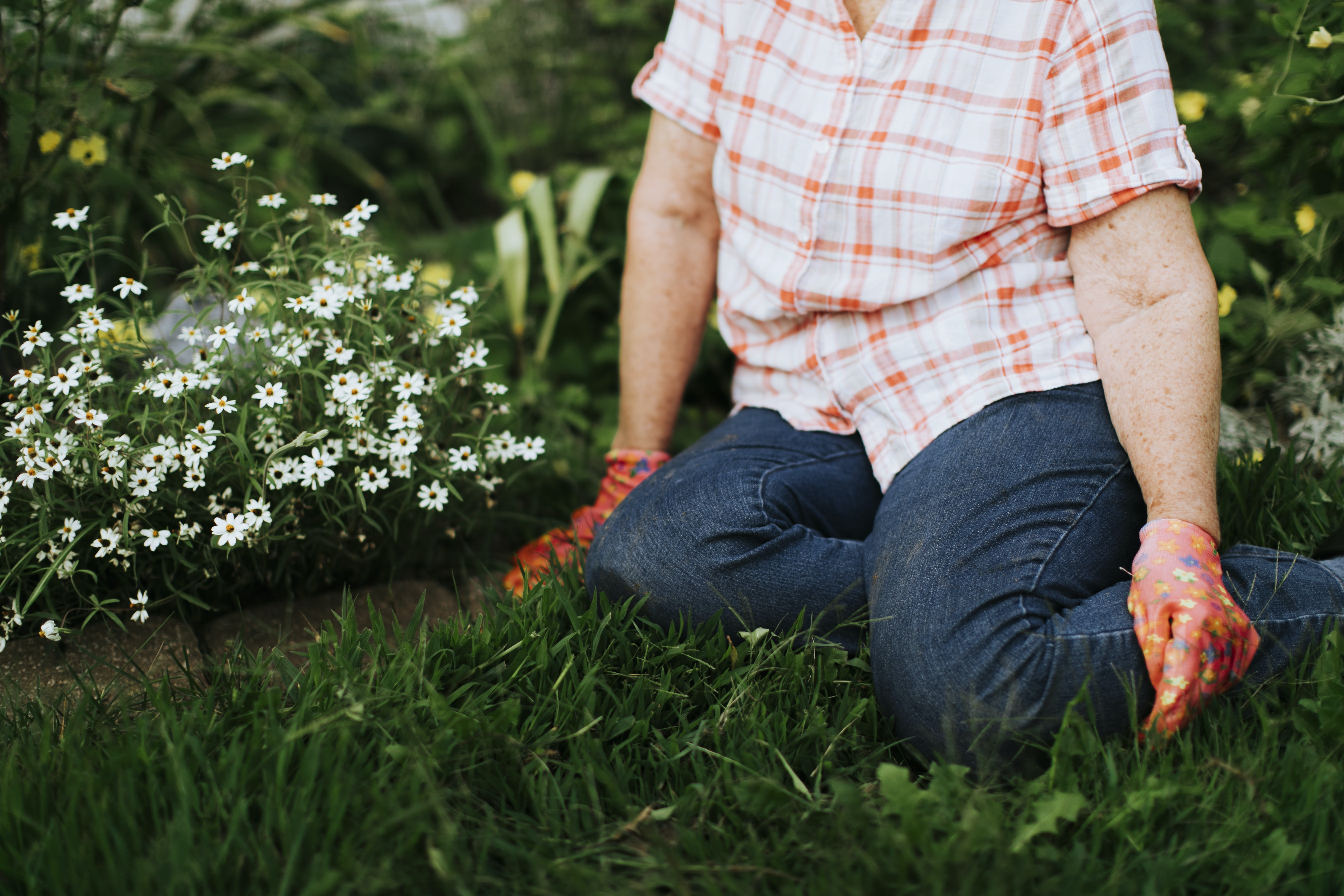 person sitting on green grass beside white flowers