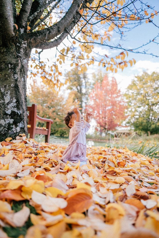 toddler playing leaves under yellow tree during daytime
