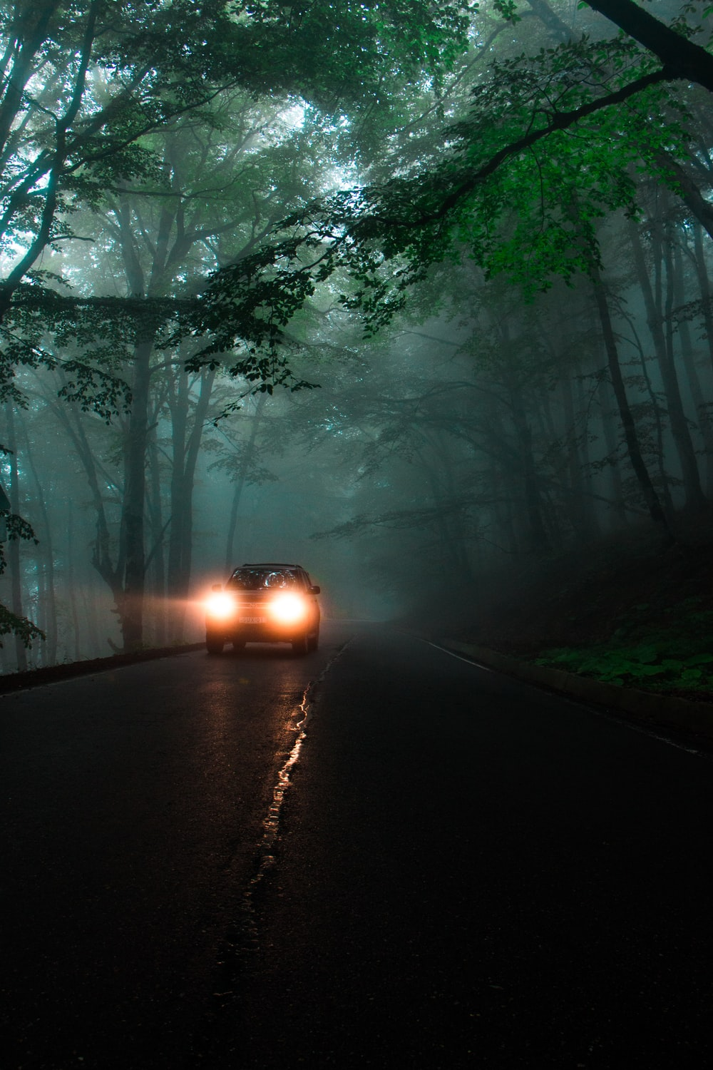 car running on road between trees during daytime
