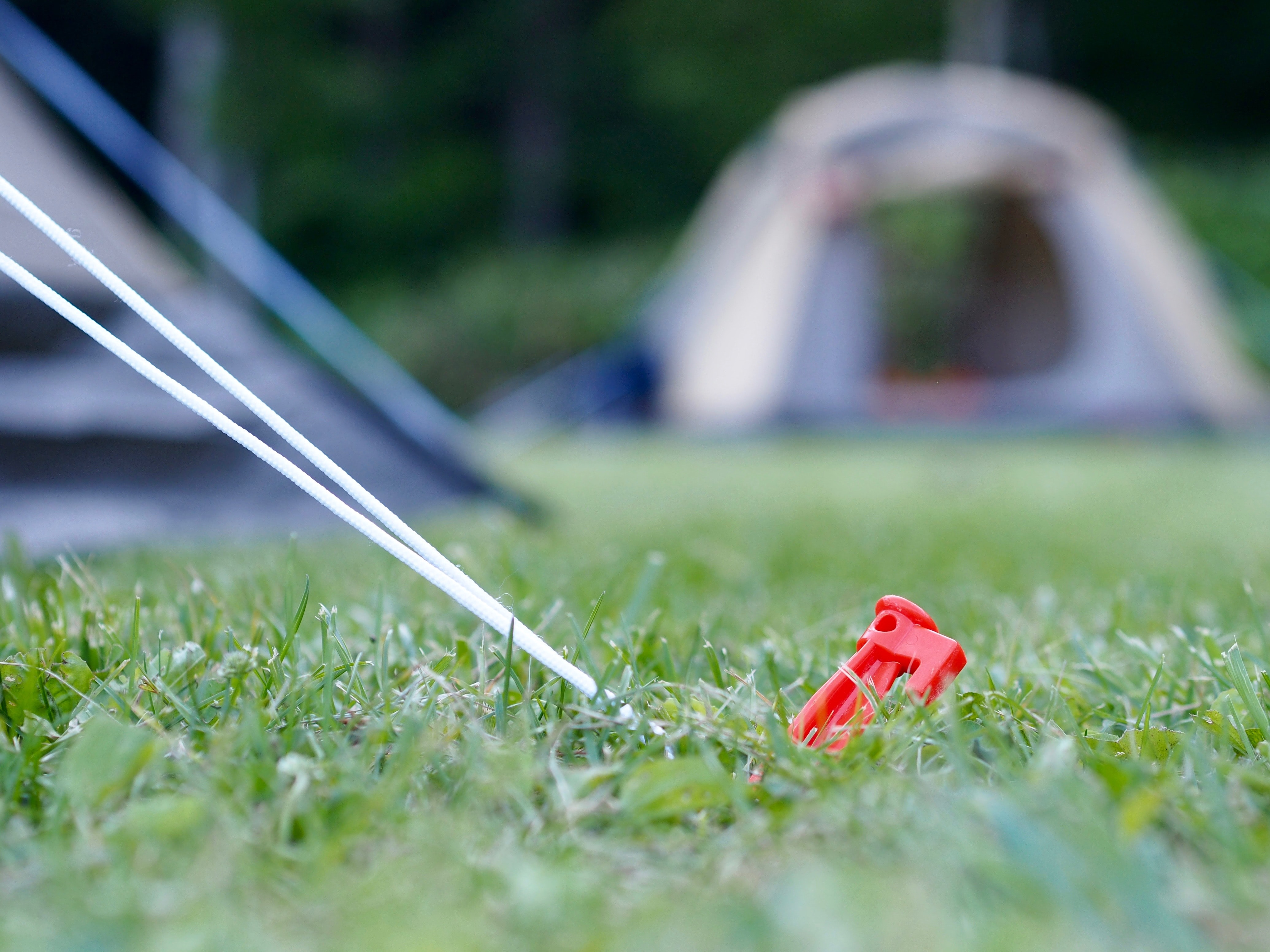 selective focus photography of red plastic tool in green grass field