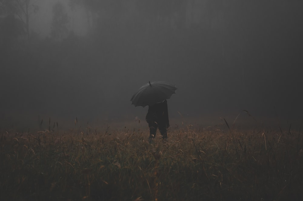 person holding gray umbrellas standing in the middle of grass field