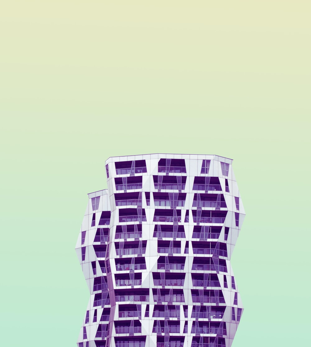 purple illustration