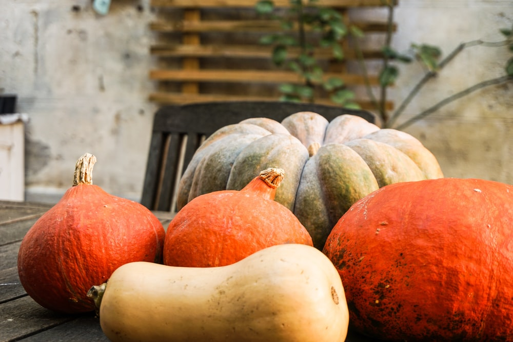 pumpkins and squash on table