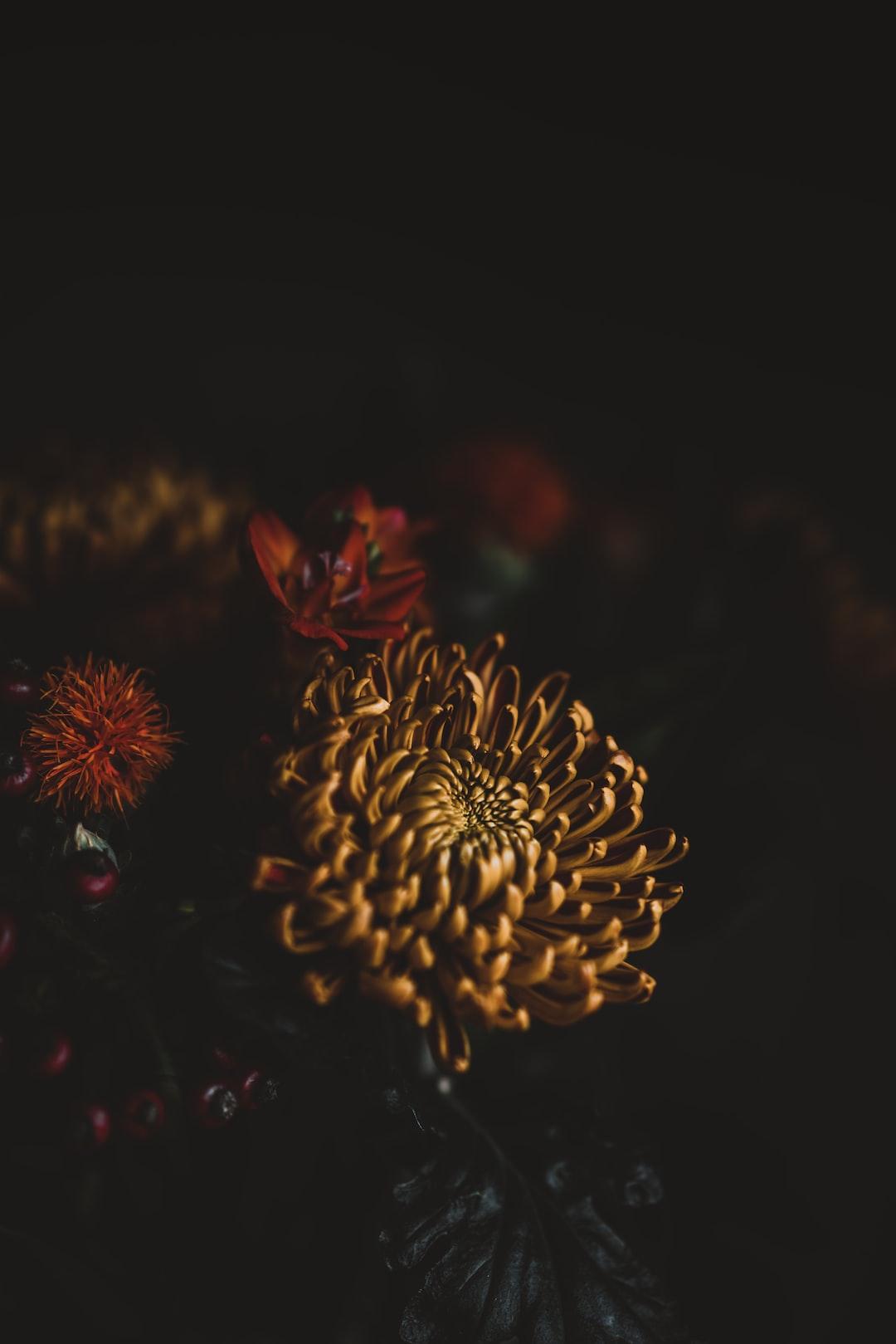 3963. Virágok