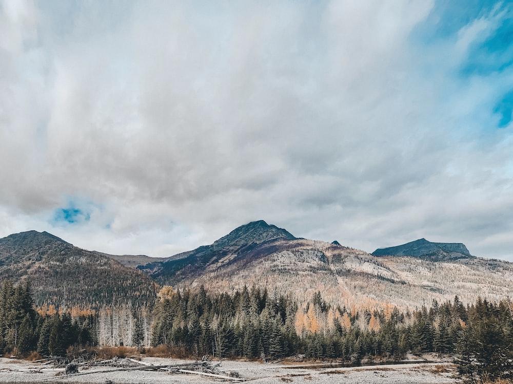 brown hills under white clouds