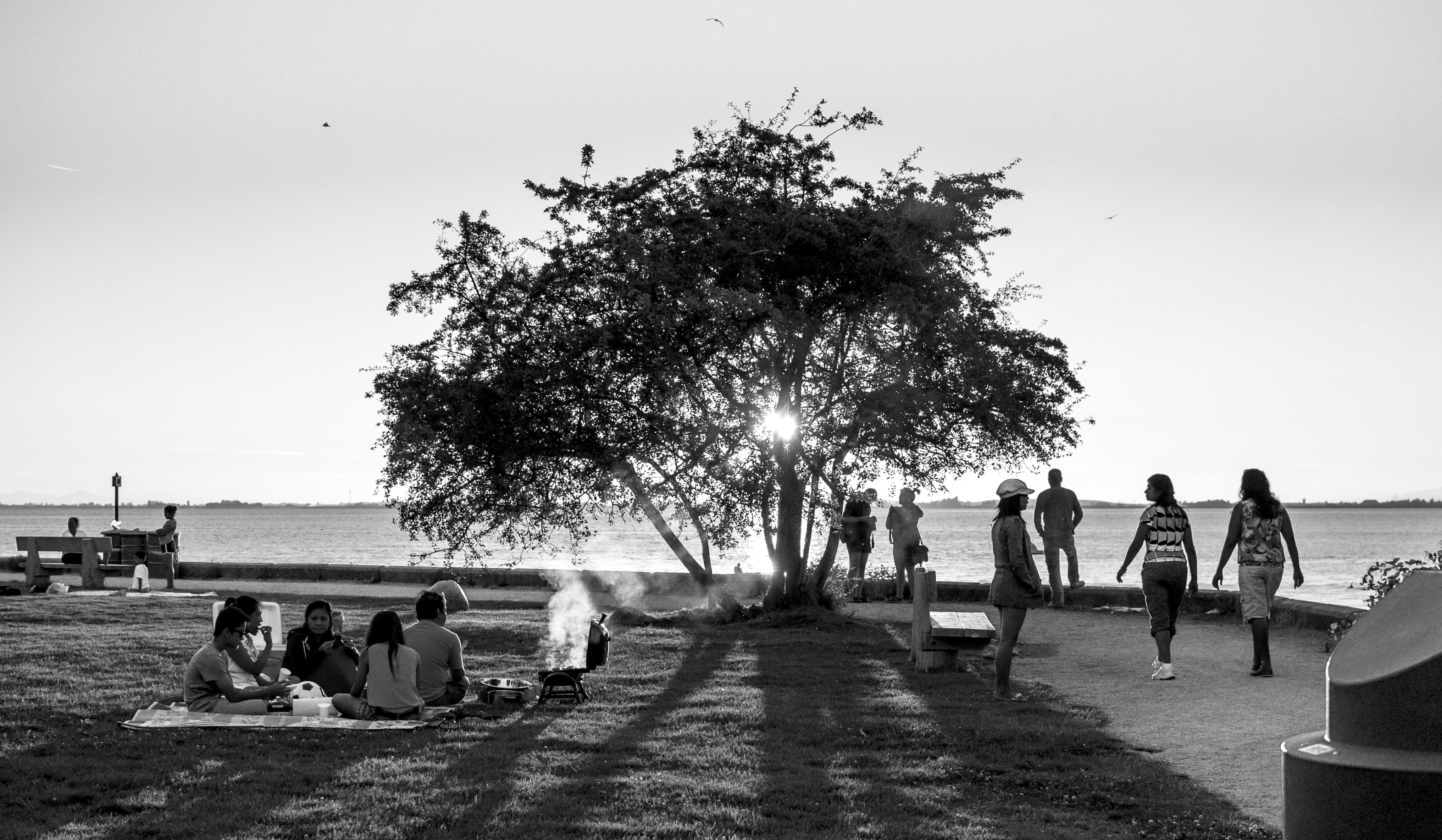 greyscale photography of people and tree