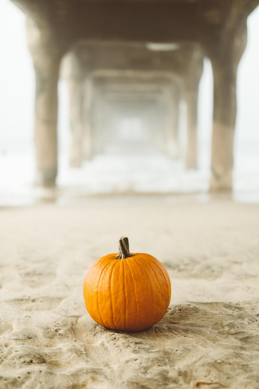 orange pumpkin on surface