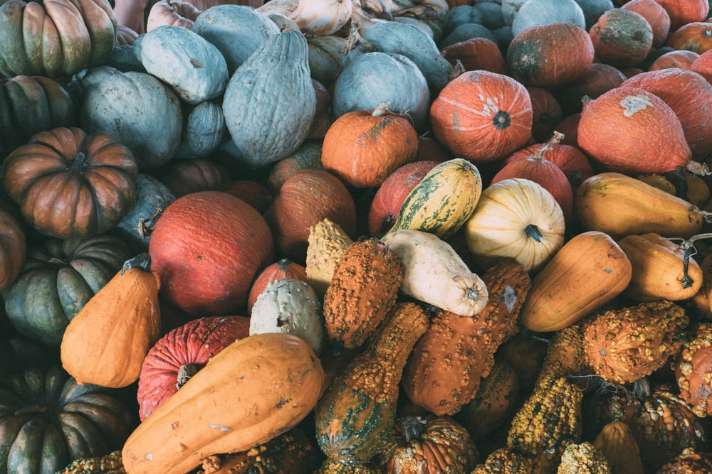 variety of vegetable lot