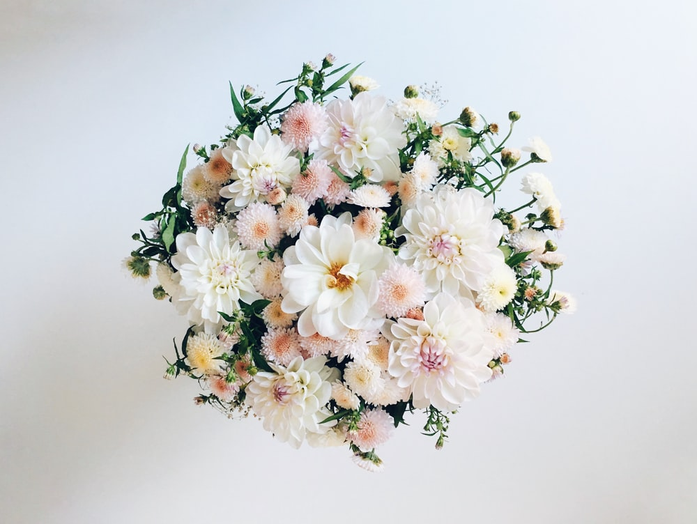 white and pink dahlia flowers in bloom bouquet
