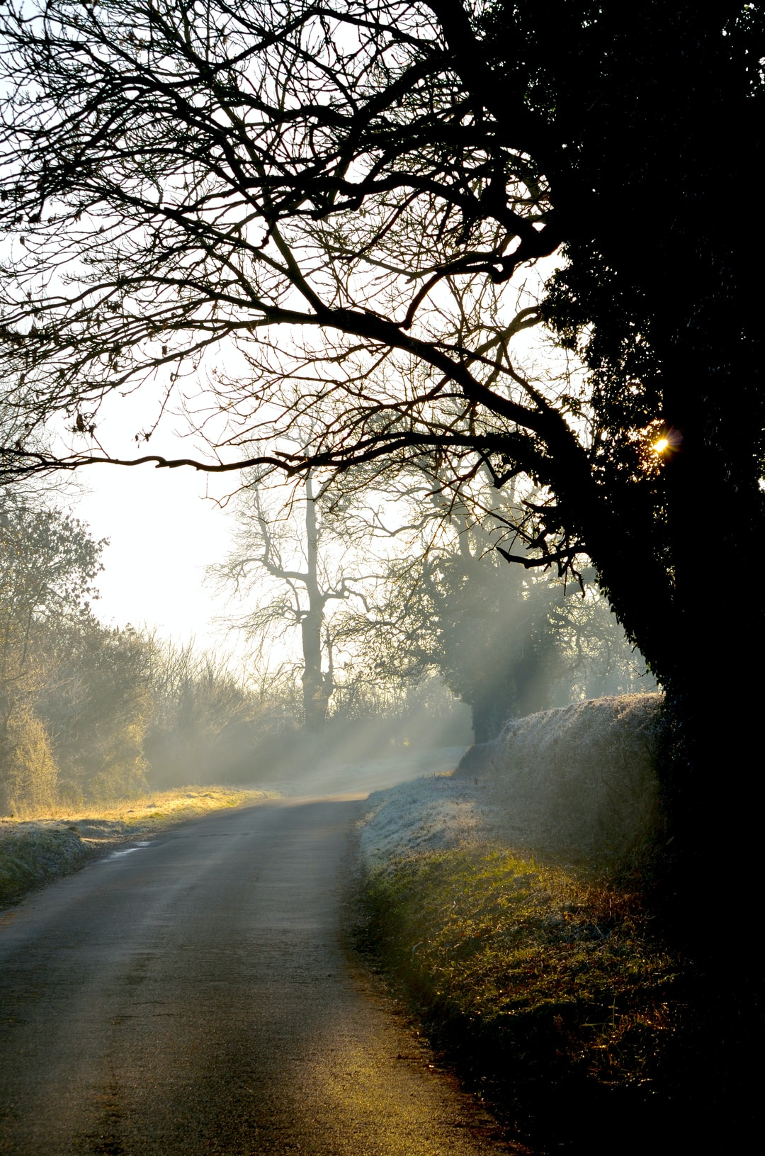 As the frozen fog lifted one morning the sunlight gave us some charming views in Northamptonshire.