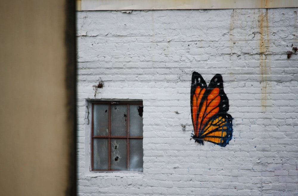 orange and black butterfly graffiti