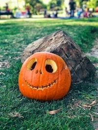 pumpkin beside stone on green grass