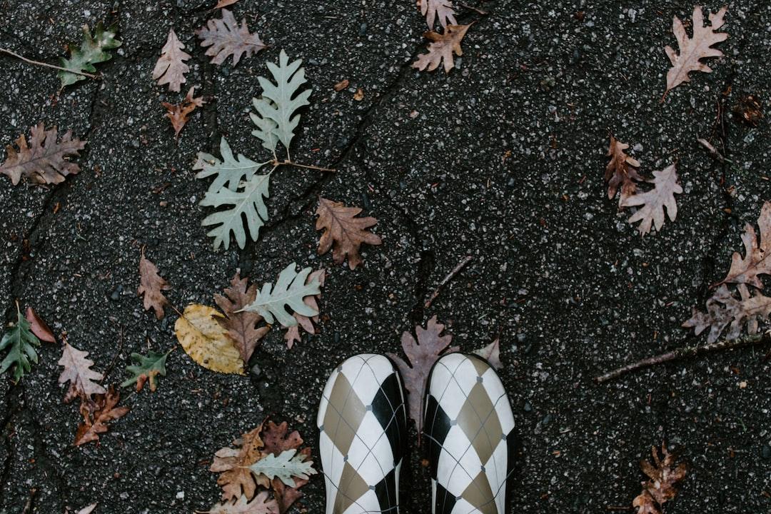 Walk in the fall rain