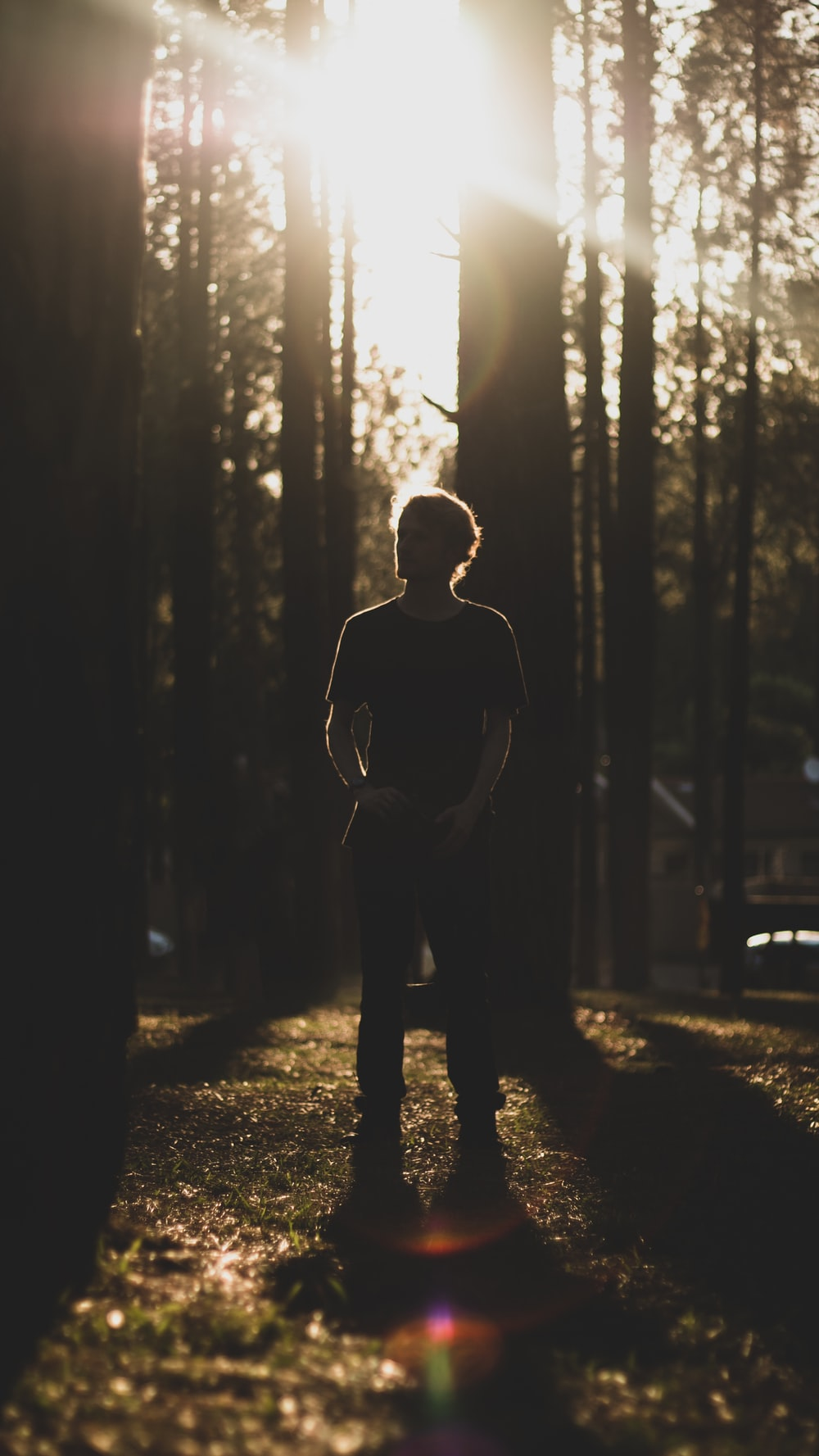 man standing under trees during daytime