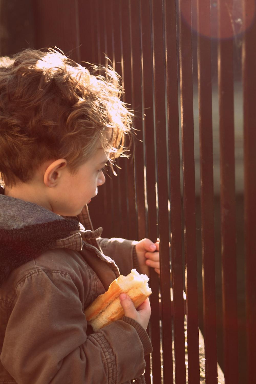 shallow focus photo of boy holding sandwich