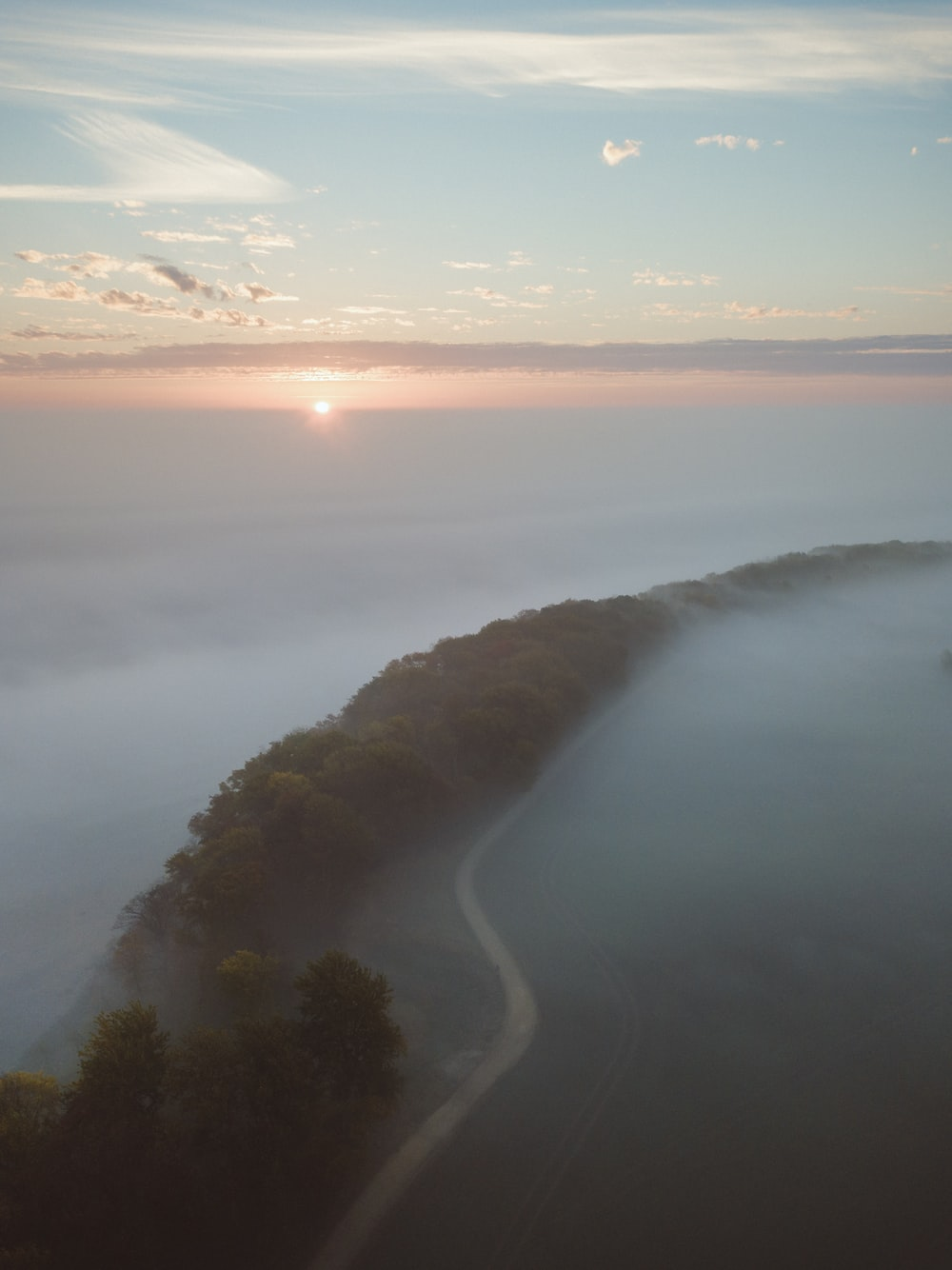 aerial photography of road beside trees covered with fogs during daytime