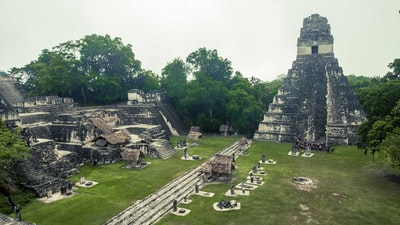 tikal temple, guatemela mayan pyramid teams background