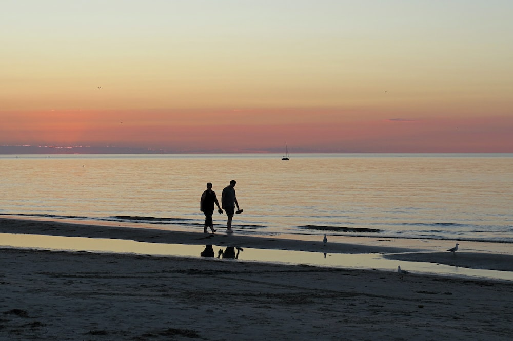 two person walking on seashore during golden hour