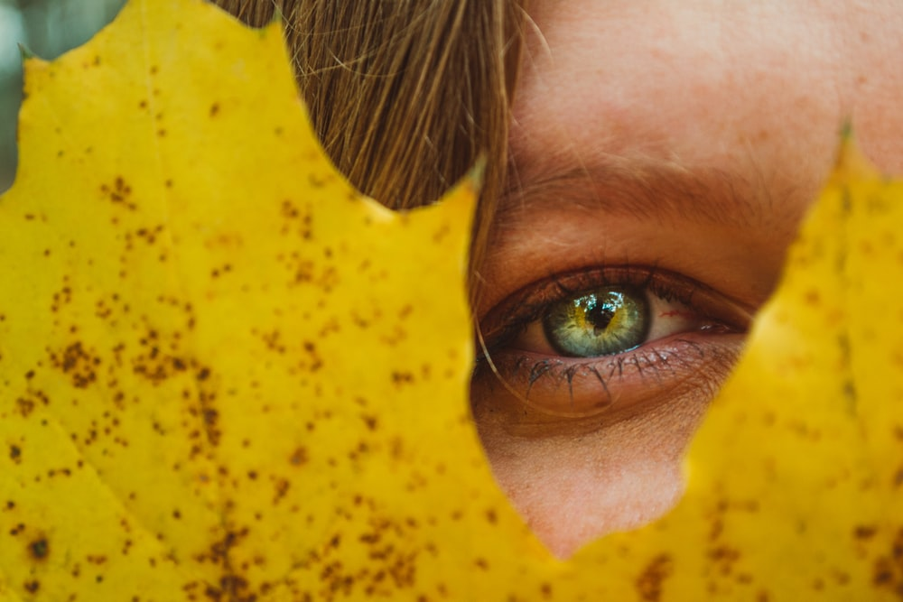 human eye through maple leaf photography