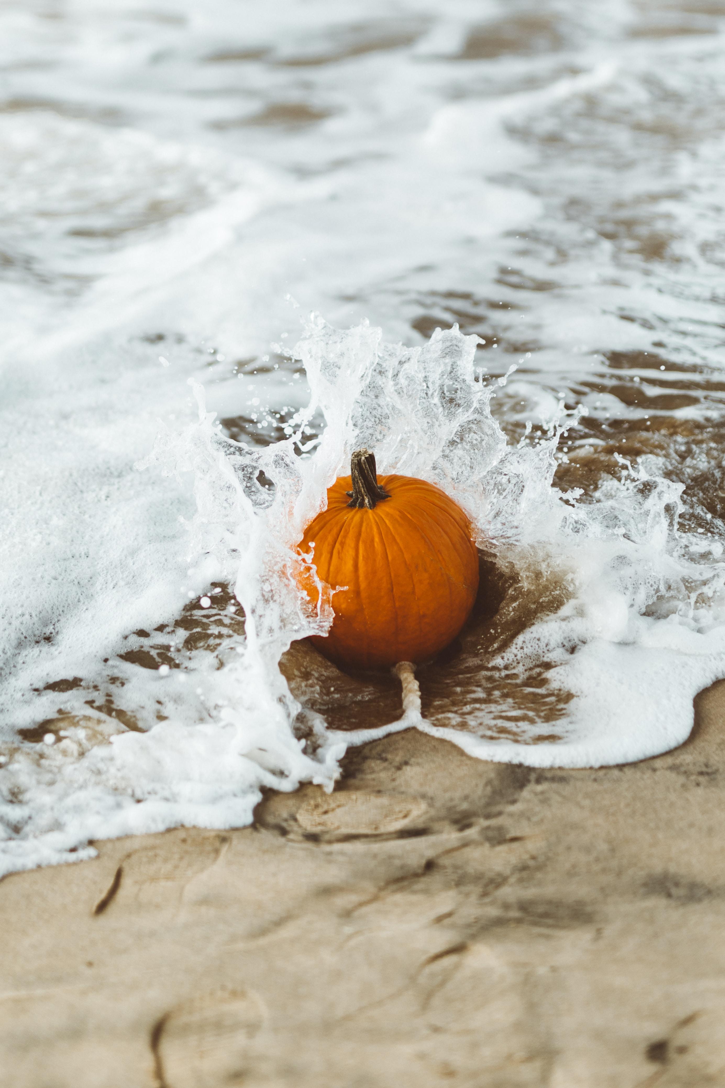 orange squash on wet sand