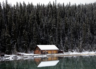 white and brown house and trees near calm body of water