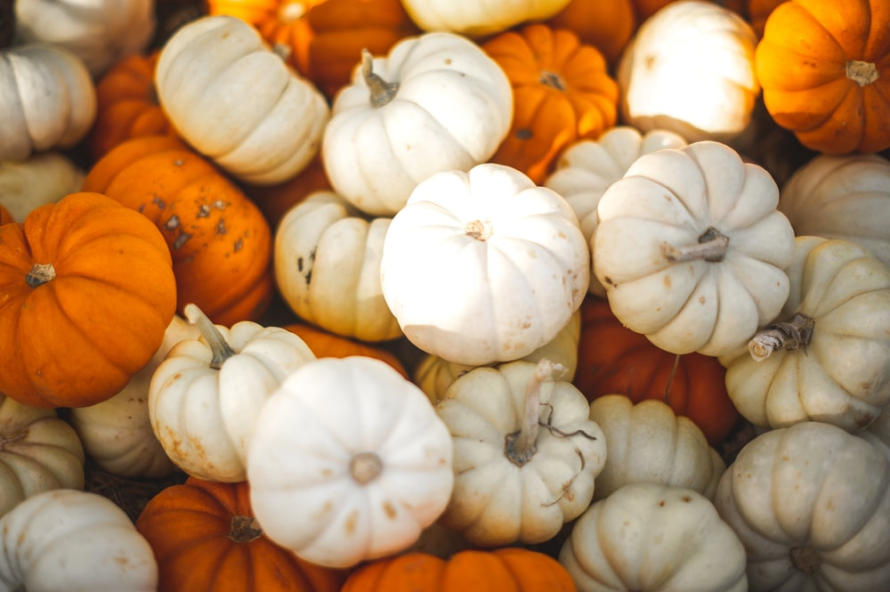 stacked white and orange pumpkins