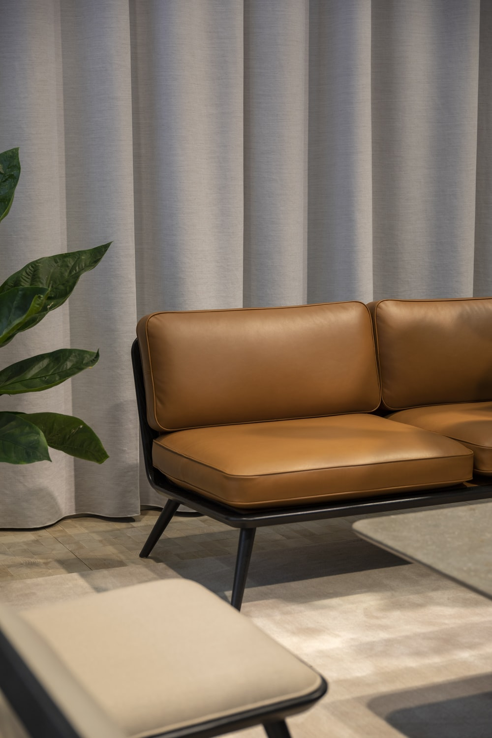brown cushion couch