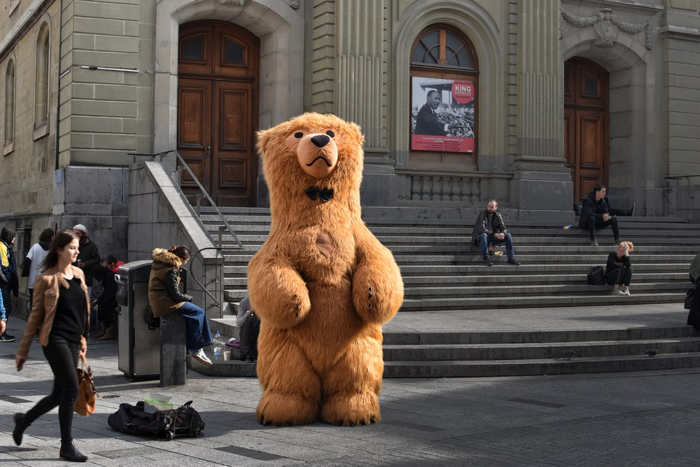 brown bear mascot standing in front of building