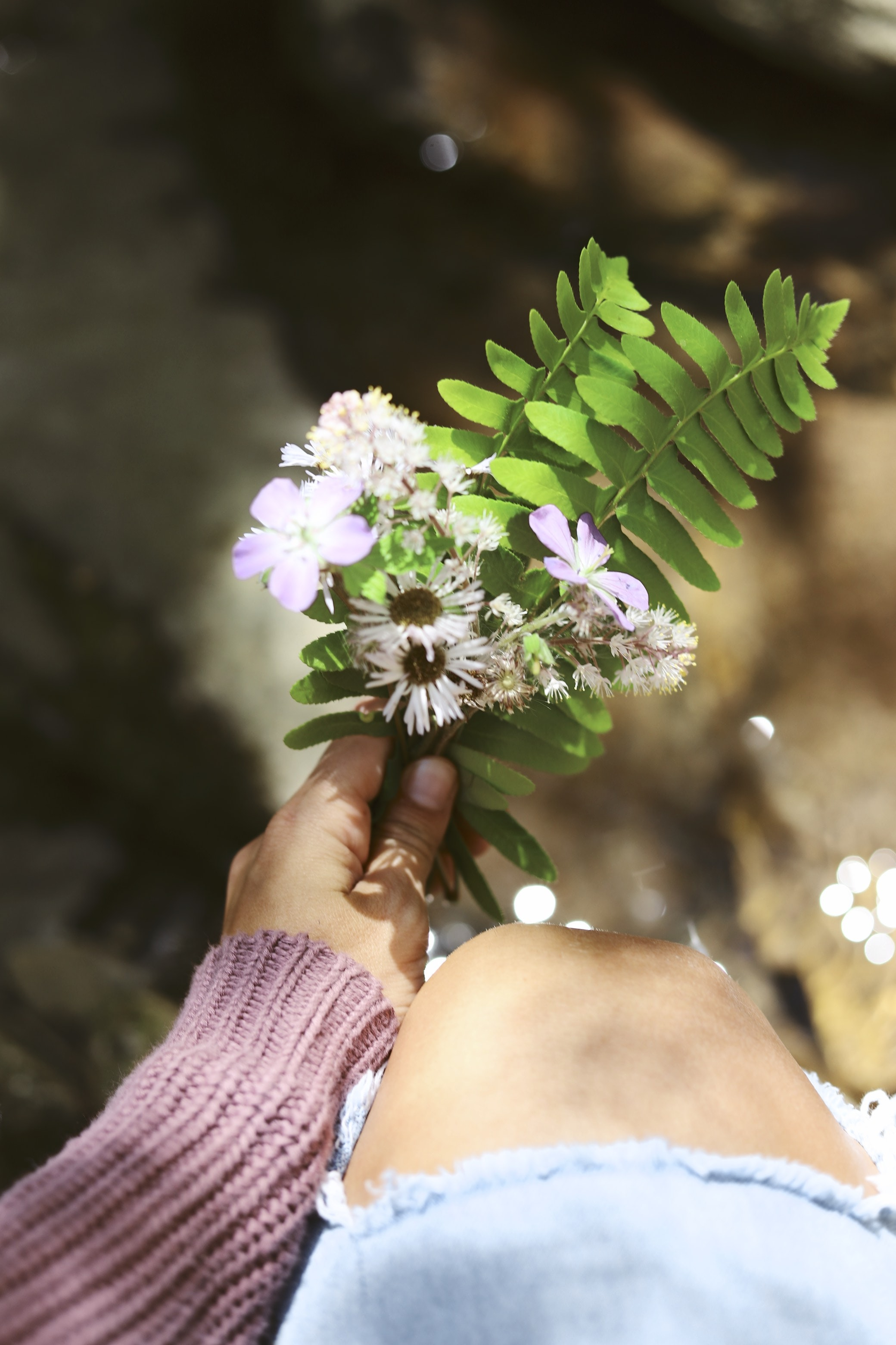 person holding white and purple flowers