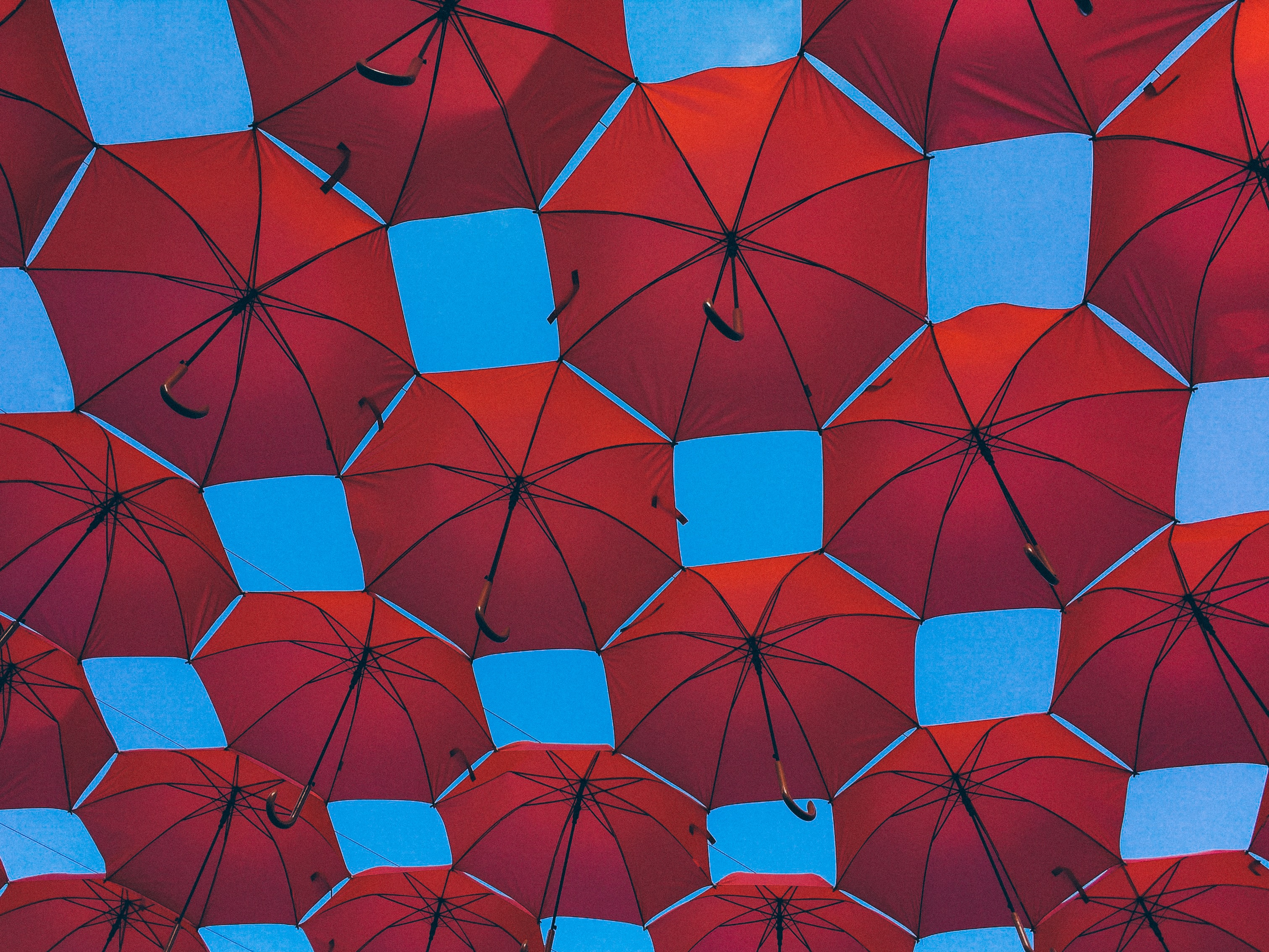 red umbrella lot