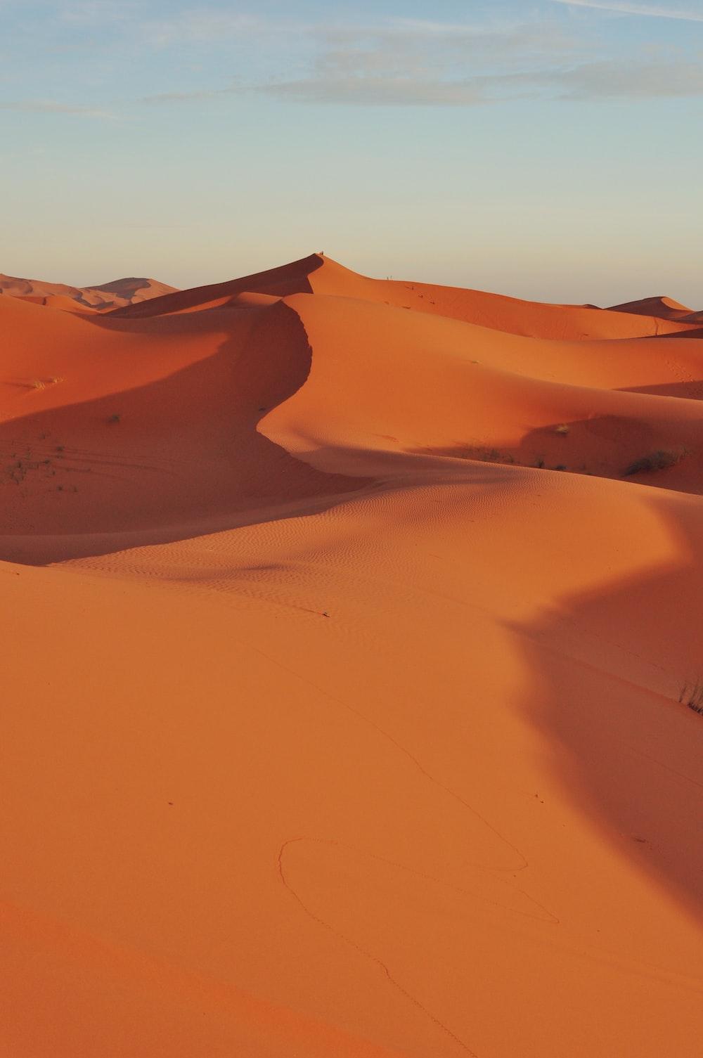 dune sand scenery