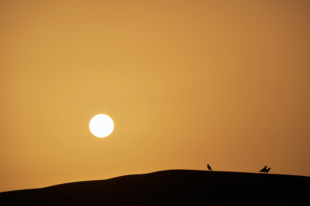 Sunrise in the Sahara, from were ever some crows came and rest on a dune
