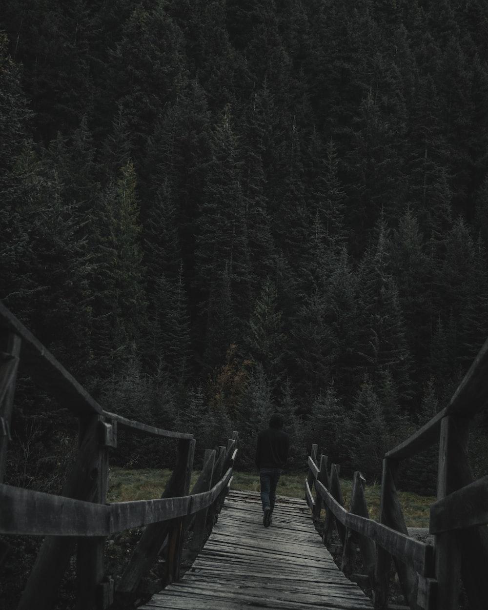 person walking on wooden bridge near pine trees during daytime