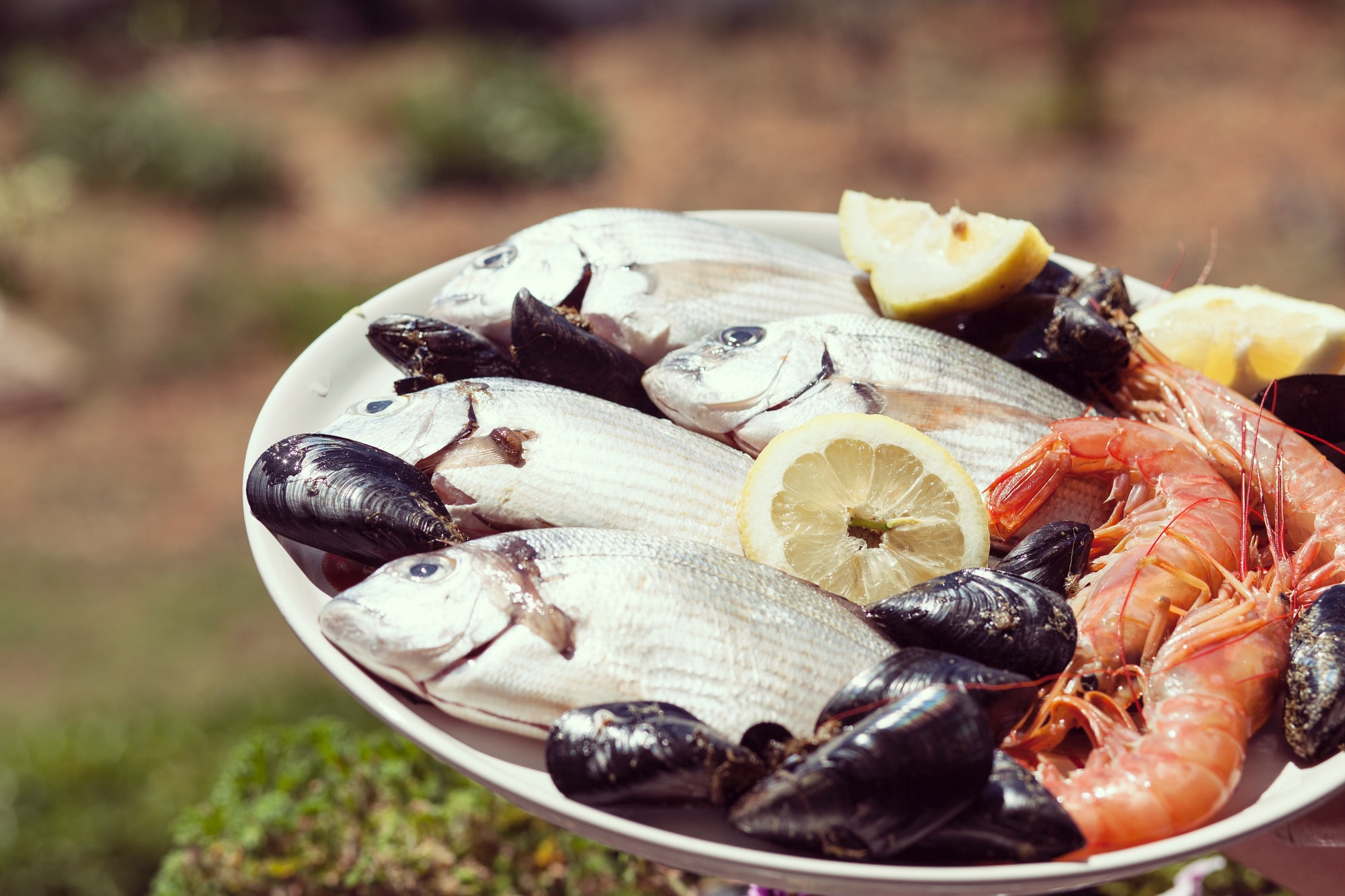 Fish and shellfish are food poisoning risk by Frank Vessia for Unsplash.