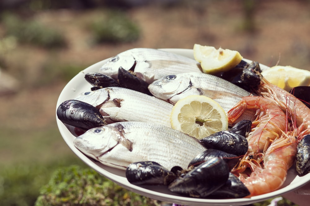 seafoods on round white plate during daytime