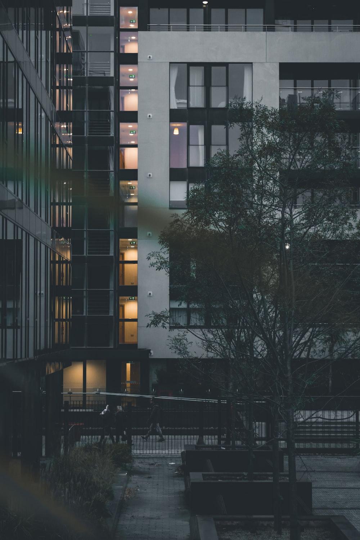 white concrete building beside gren tree