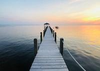 brown wooden dock during golden hour